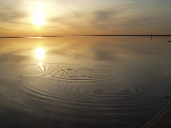 seascape, calm, ripples, sunset, pictures