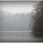 elklake, fog, vancouverisland, victoria, bc