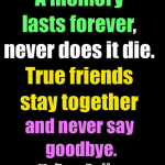 friendship, quotes, friend, sayings, true, goodbye