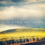 goodbye, quotes, sayings, i say hello