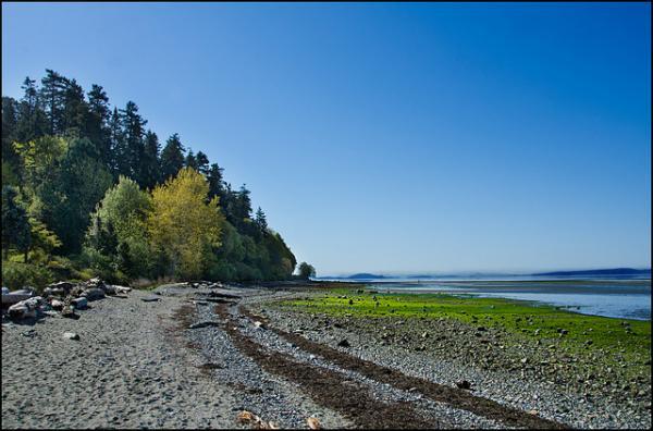 crescent beach, bc, canada, landscape