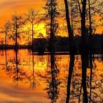 spring, sunrise, sunup, morning, sc, lake, landscape