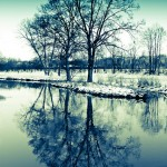 trees, fluss, river, reflection, winter, frosty, cold, blue, snow