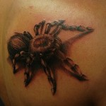 tattoo, designs, tattoos, ideas, 3d, art, spiders, tarantula, photography