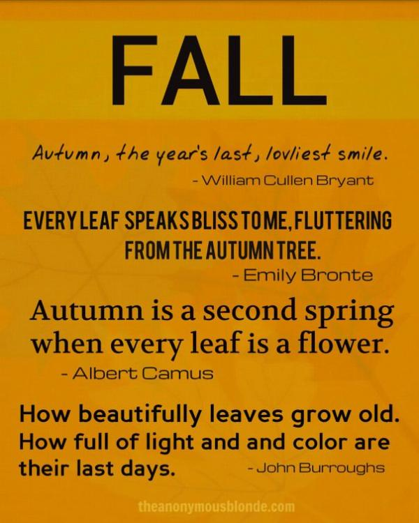 Fall Fashion Quotes: Fall, Autumn, Quotes, Sayings, Photos, Famous, Deep, Nice