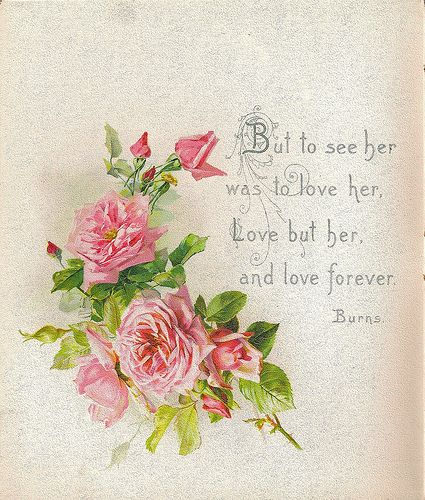 Love Poems, Sayings, Romantic, Quotes, Flowers