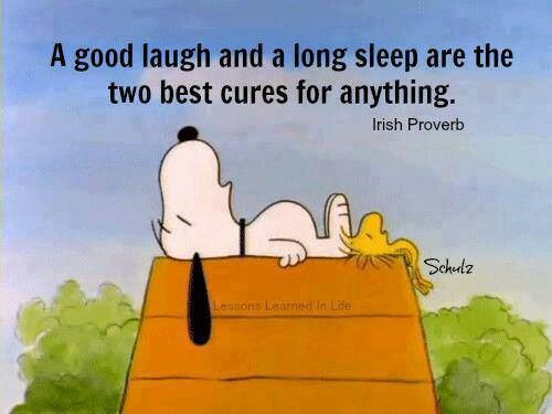 Charlie Brown Quotes Funny Cartoon Sayings Irish Proverb