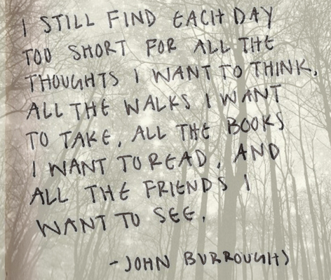 John Burroughs Quotes and Sayings, friends, deep