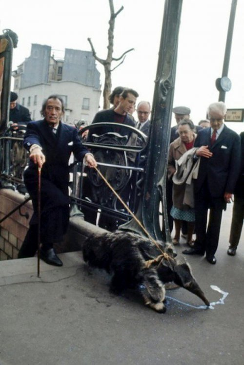 Artist Salvador Dali and hand anteater