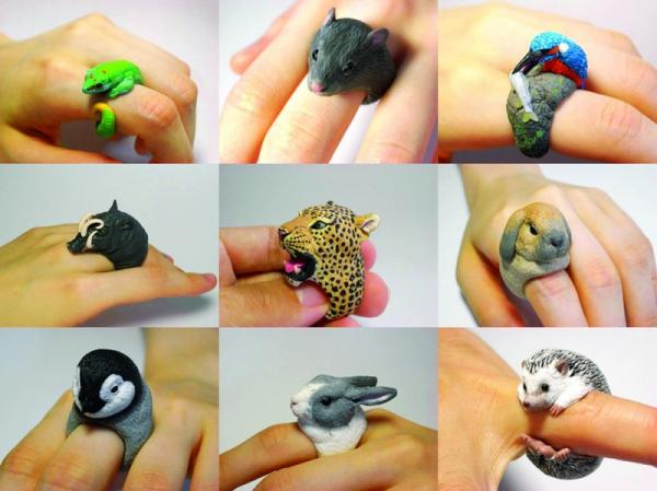 Funny pictures, ridiculous, cute rings