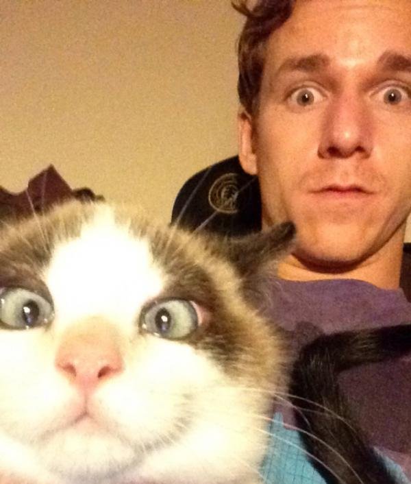 Positive and amazing, funny pictures, faces, cat, man
