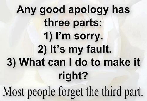 im sorry quotes 3