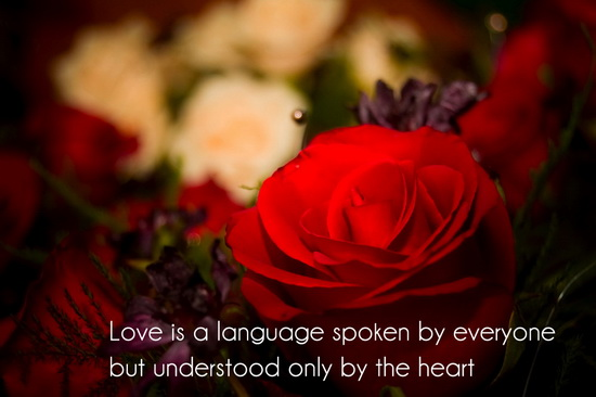 inspirational love quotes 6