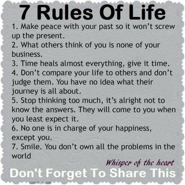 Lesson In Life Quote Alluring Life Lesson Quotes  Fav Images  Amazing Pictures