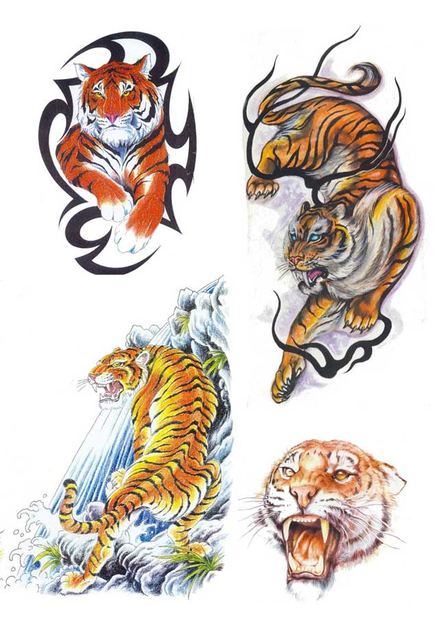 tiger tattoo designs 3