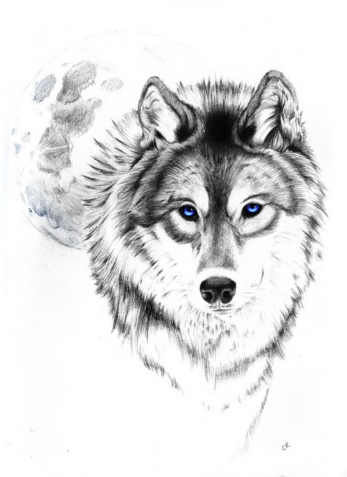 wolf tattoo designs 1