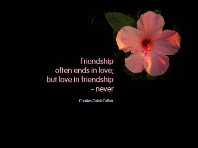 friendship love quotes 2