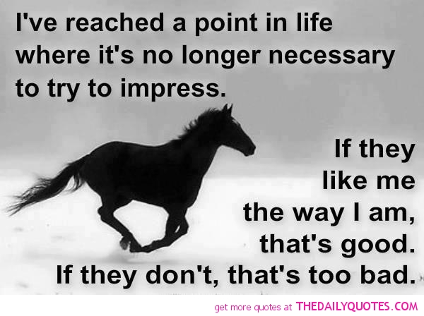 horse sayings 5