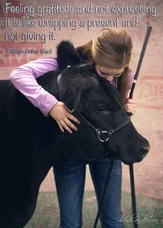 livestock quotes 1