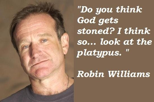 robin williams quotes 5