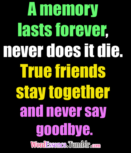 sayings about friendship 3