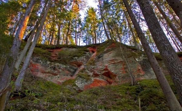 Gauja National Park, Latvia, photo