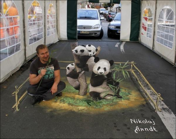 Three-dimensional street art, Nicholas Arndt, pandas